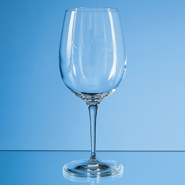 480ml Allegro Wine Glass