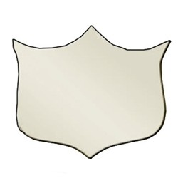 29mm Bevel Edged Silver Side Shield