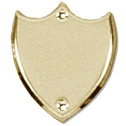 41mm Bevel Edged Gold Side Shield