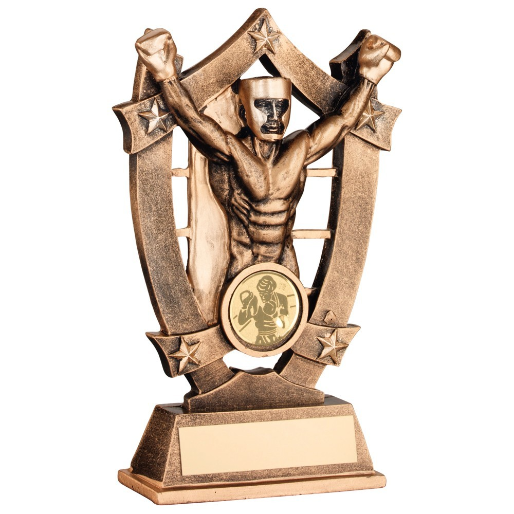 Bronze And Gold Resin Boxing 5 Star Trophy