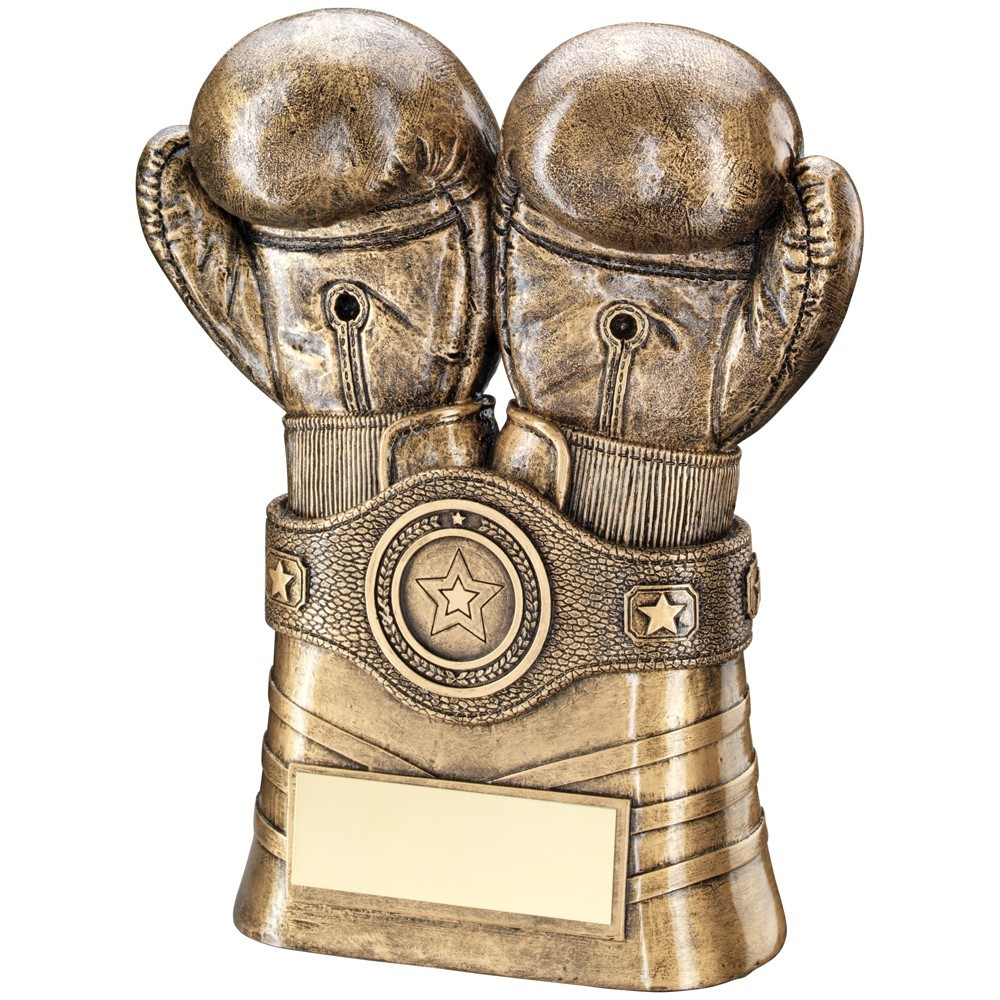 16.5cm Bronze & Gold Boxing Gloves+Belt Trophy - 6.5In