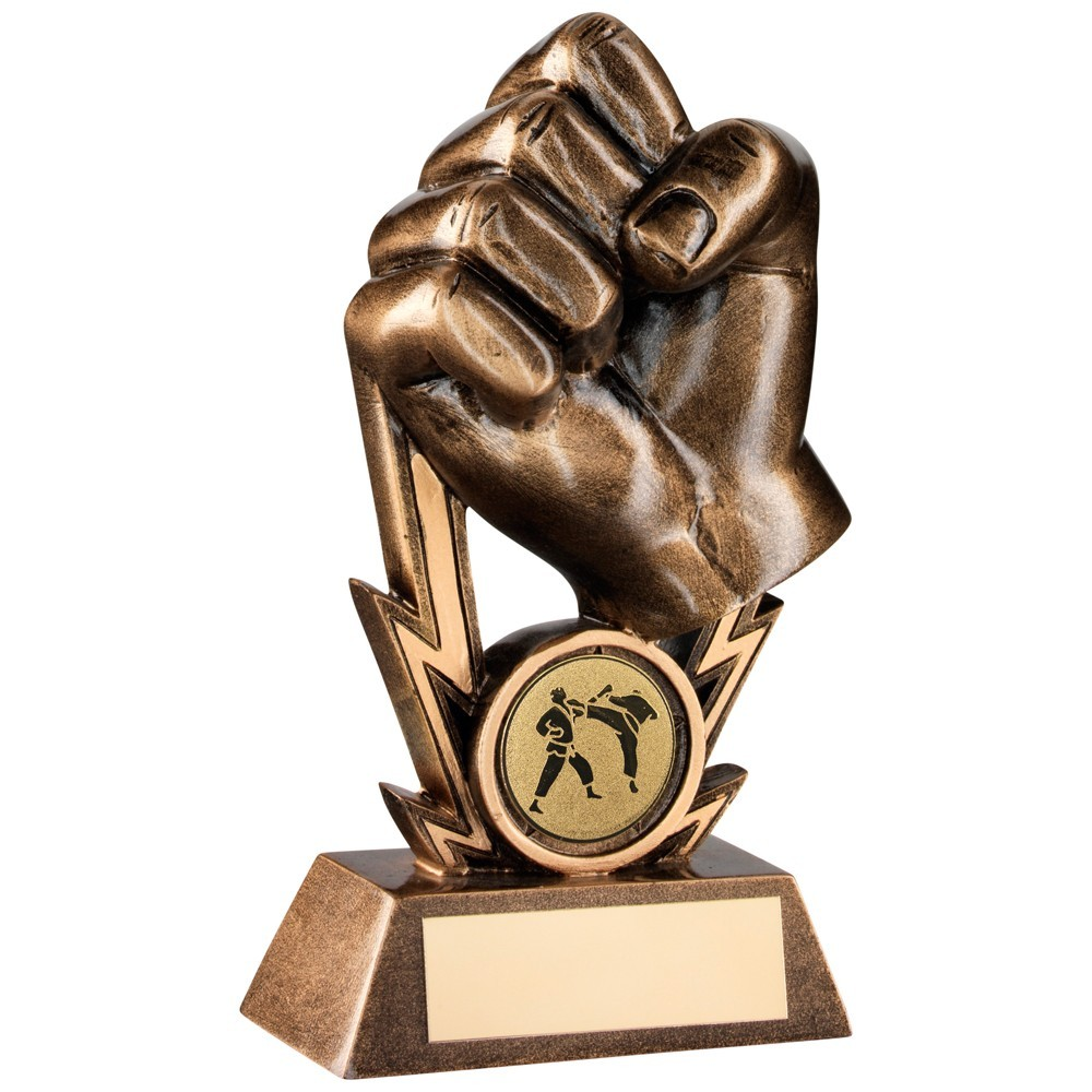 Bronze And Gold Martial Arts Fist On Strikes Trophy