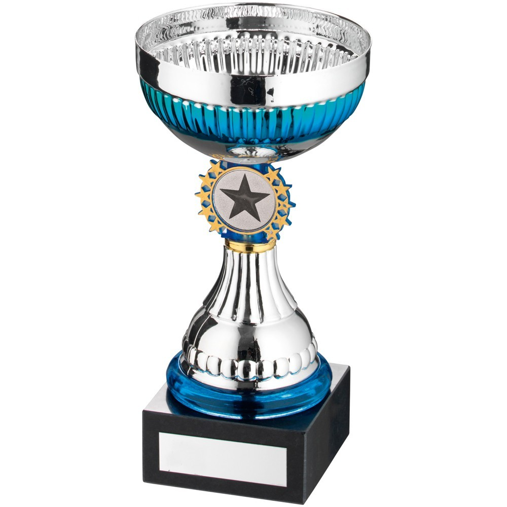 Silver And Blue And Gold Bowl Trophy