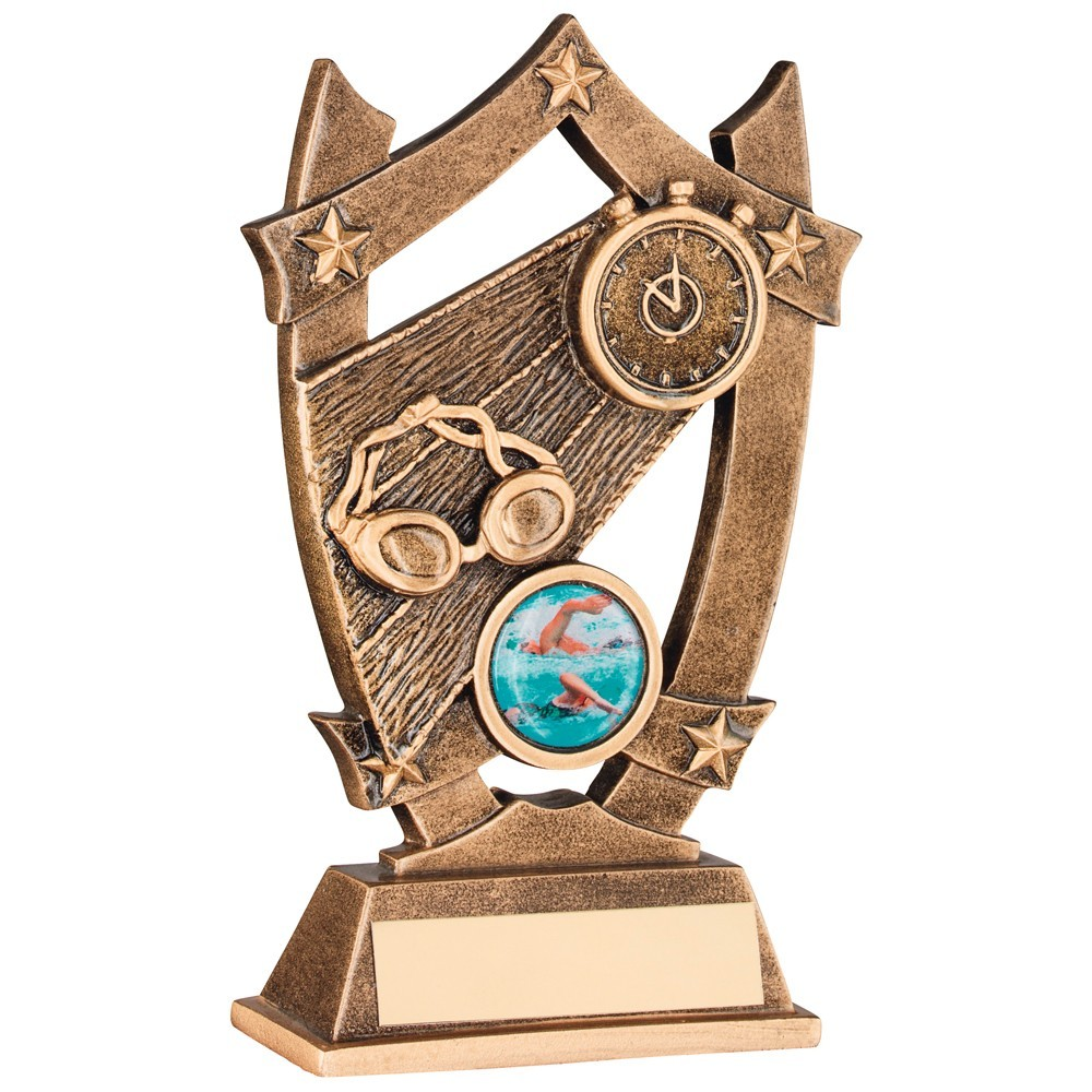 Bronze And Gold Swimming 5 Star Trophy