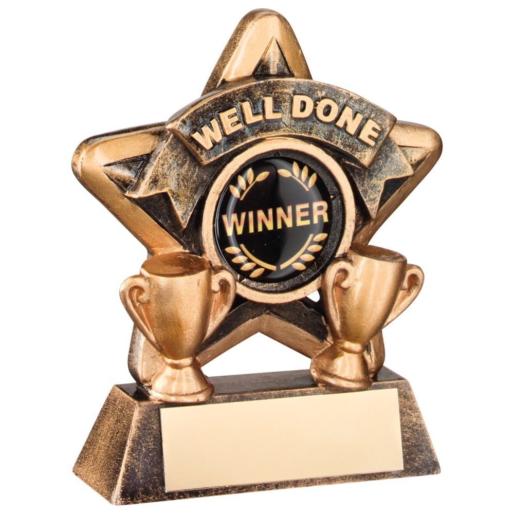 Fantastic Bronze and Gold Well Done Mini Star Trophy