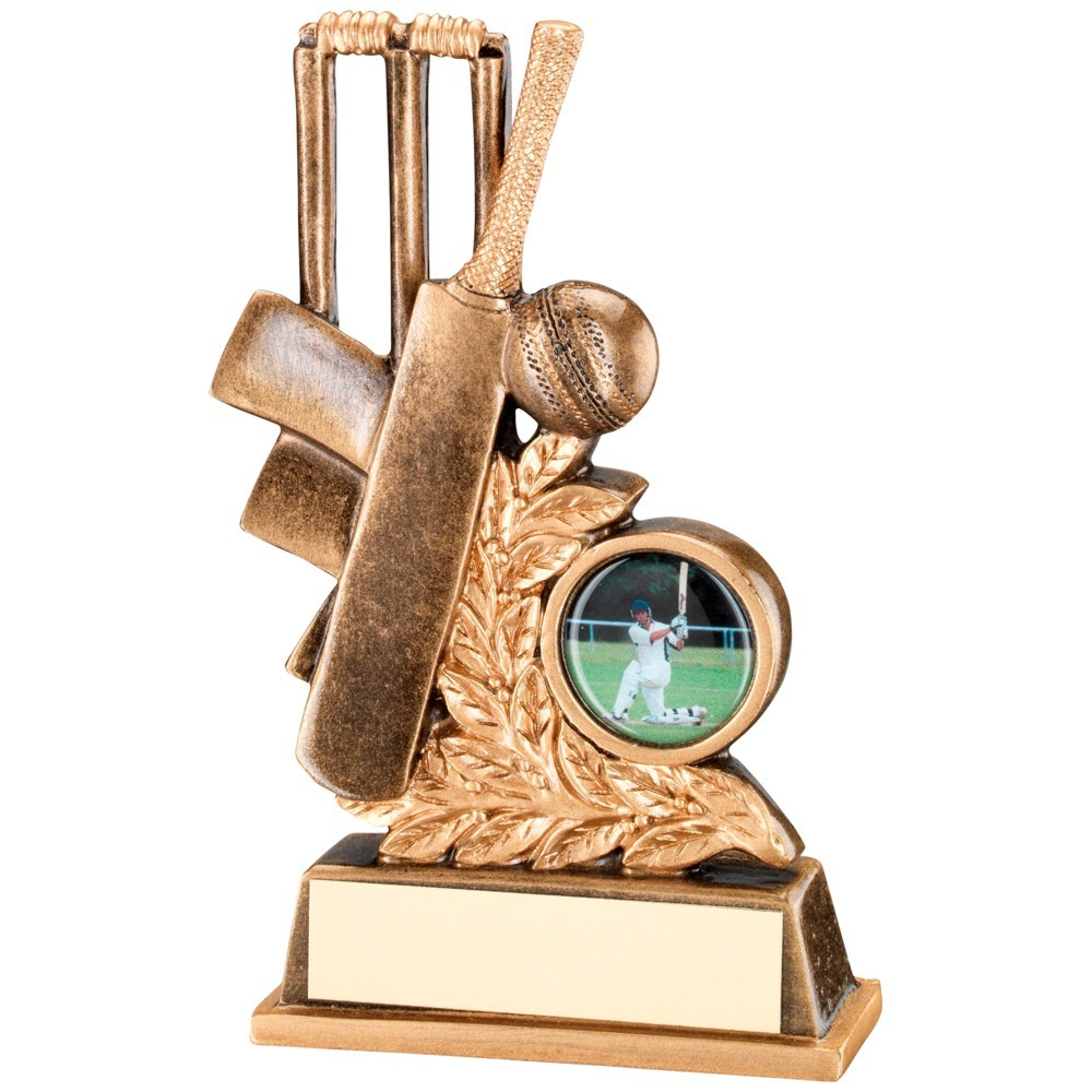 Bronze And Gold Cricket Leaf Plaque Trophy