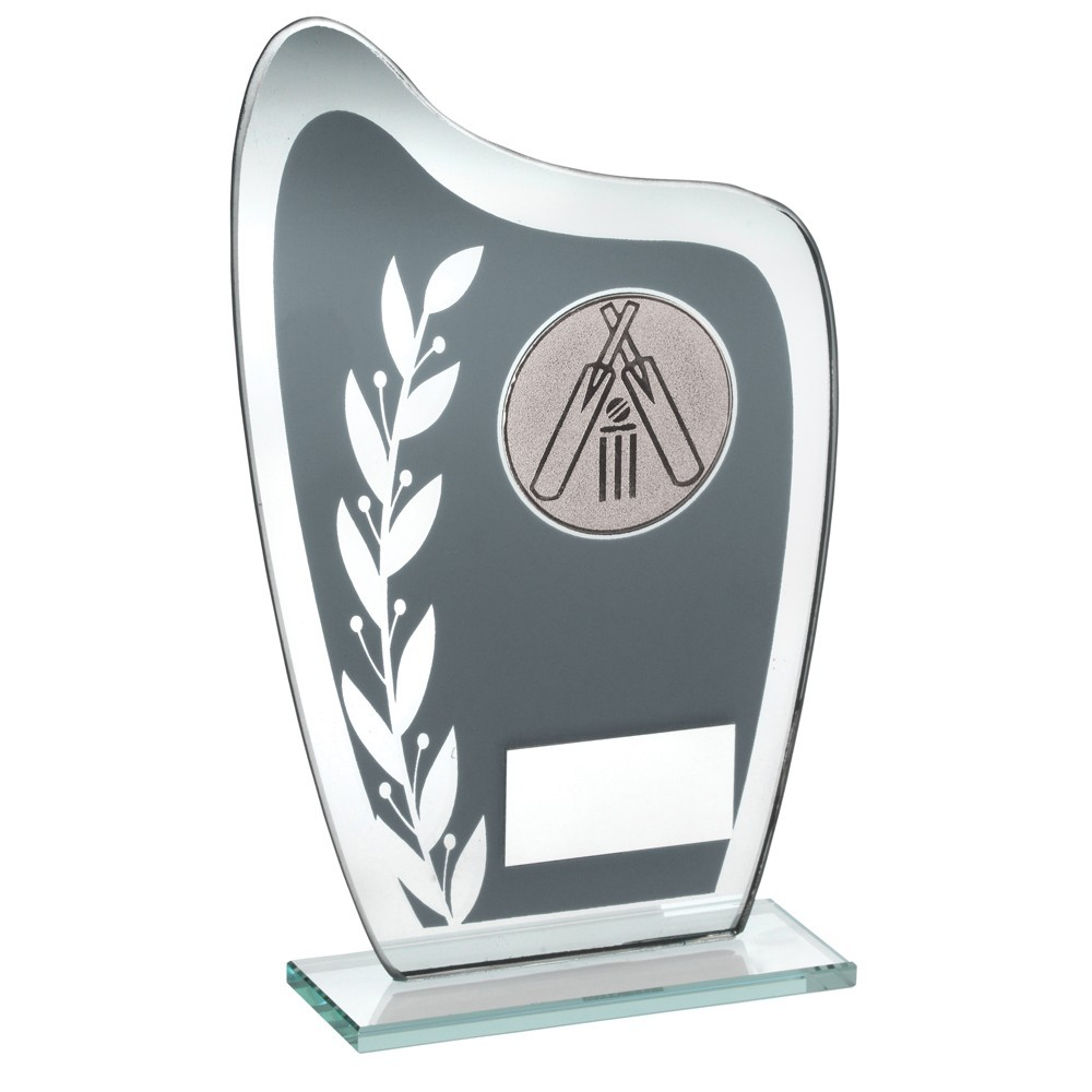 Grey And Silver Glass Plaque With Cricket Insert Trophy