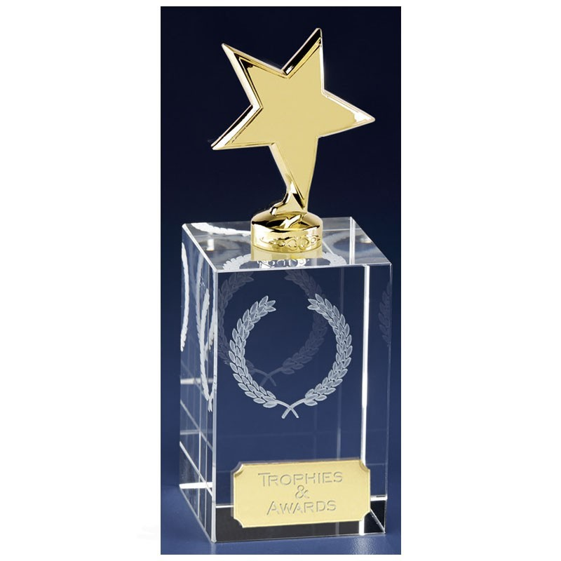 Clarity Gold Star Clear Award And Gold