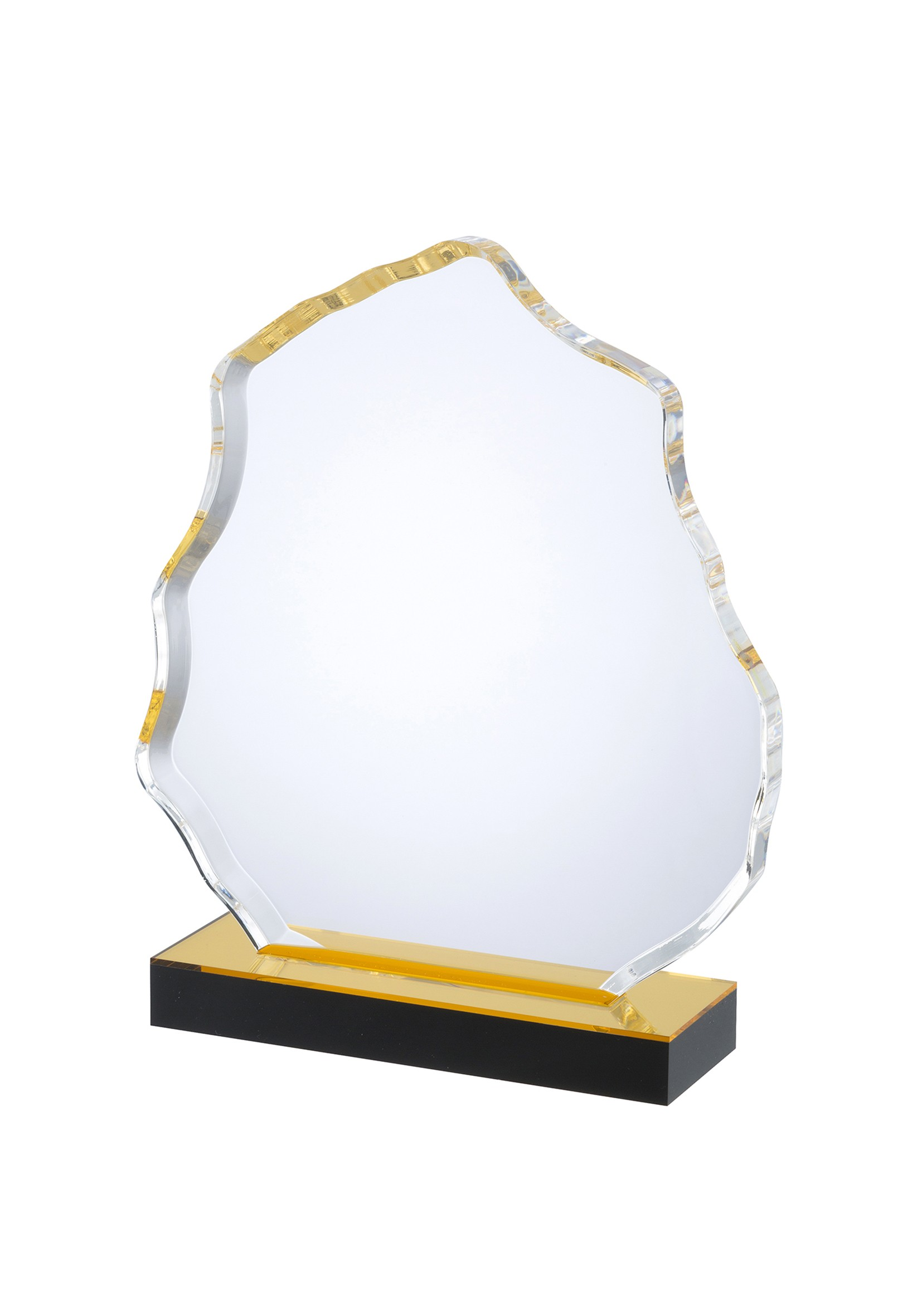 LG Acrylic Award