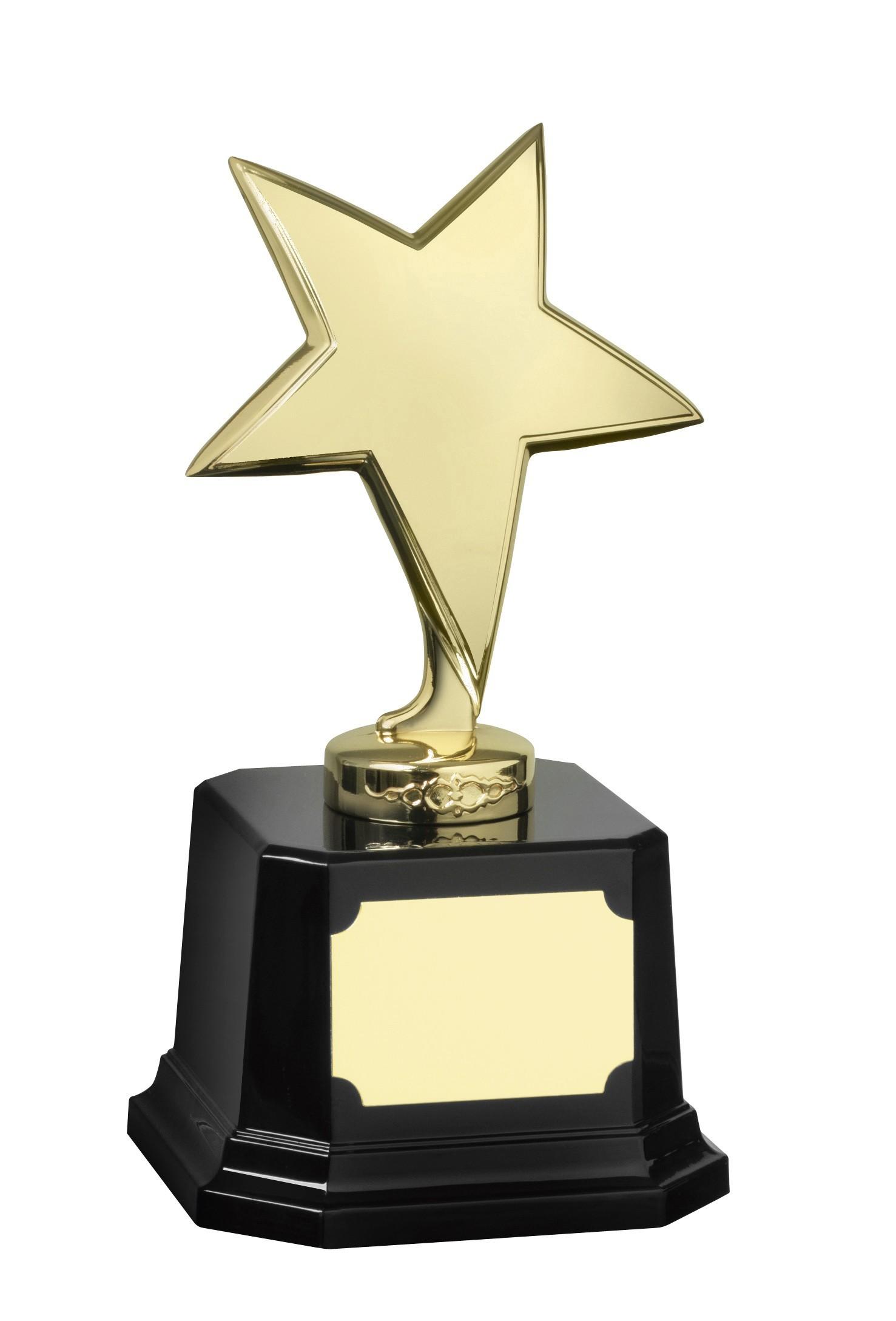 MB-EACH (P) 23cm Gold Finish Star Award