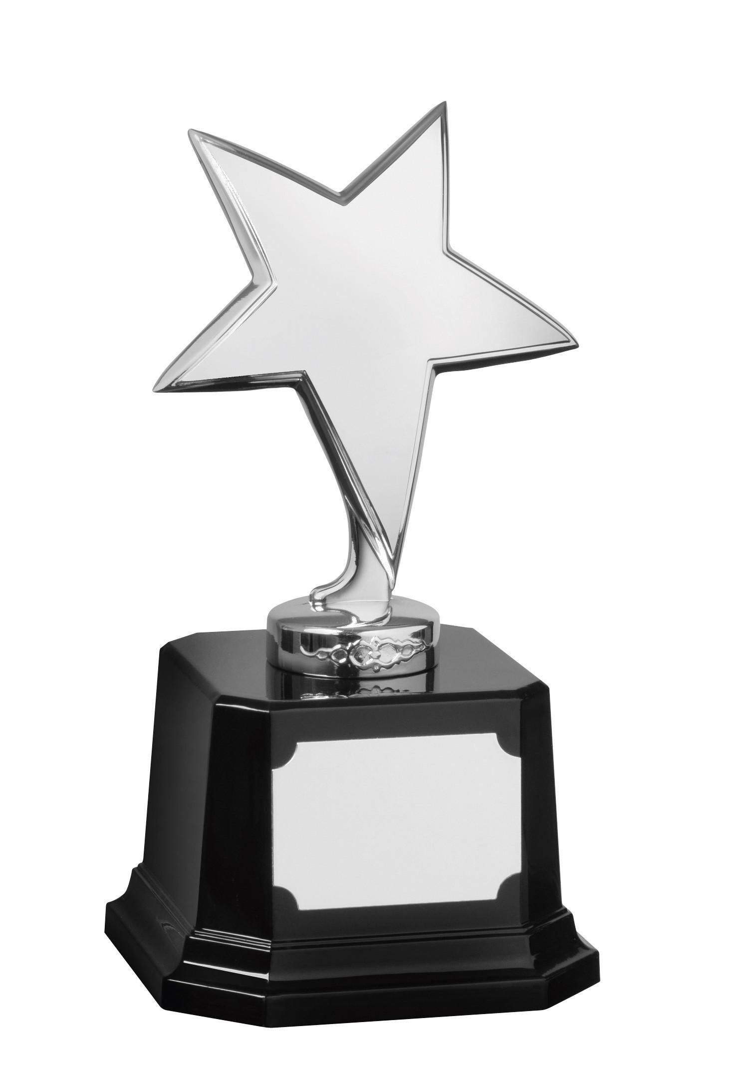 MB-EACH (P) 23cm Silver Finish Star Award