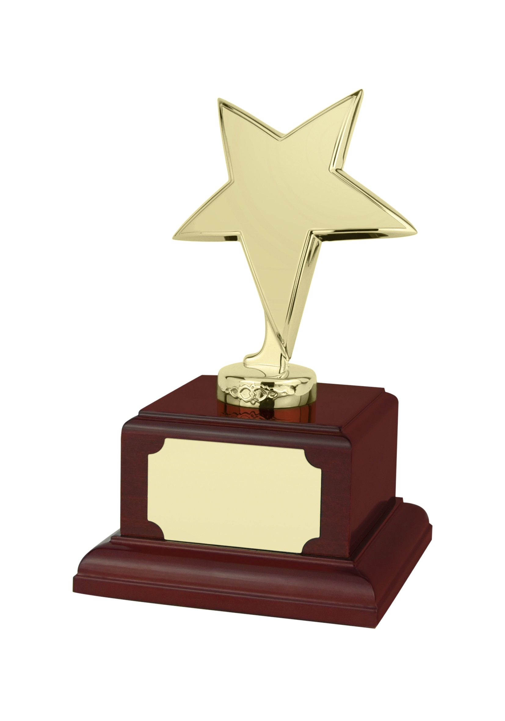 MB-EACH (P) 17.5cm Gold Finish Star Award