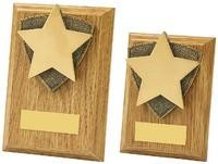 10cm Light Oak Star Wood Plaque Award