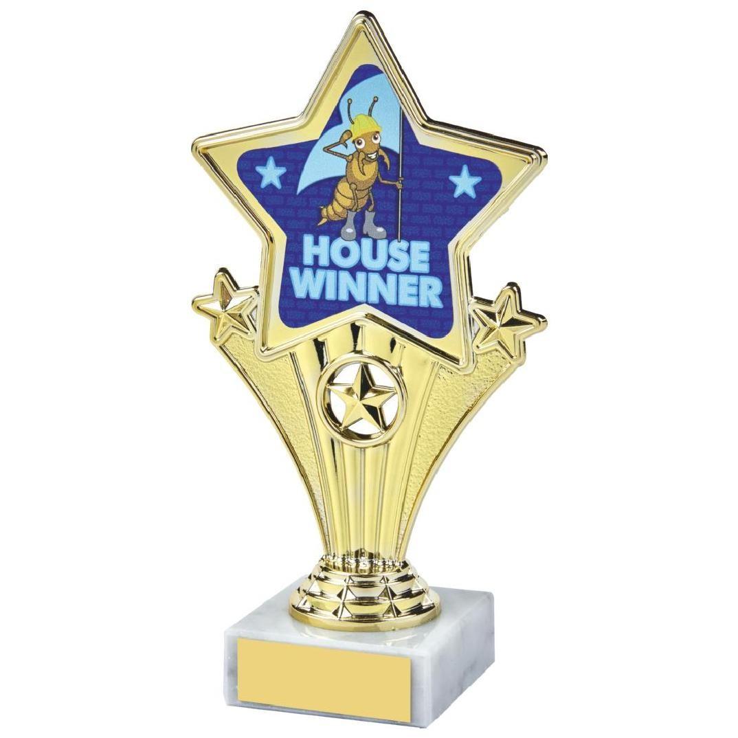 17cm Fun Customisable Star Awards