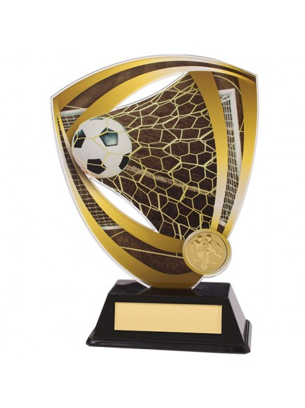 Fortress Football Acrylic Plaque
