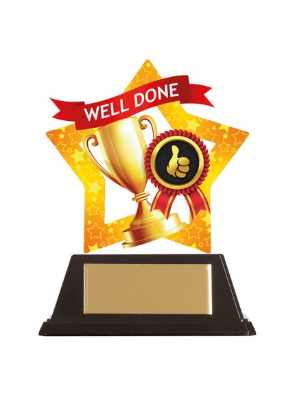 Mini-Star Well Done Acrylic Plaque 100mm