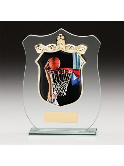 Titans Glass Basketball Shield