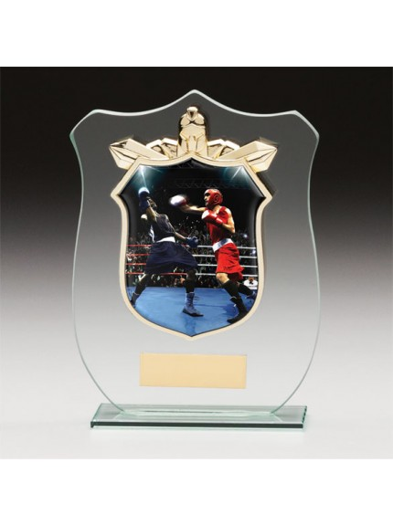Titans Glass Boxing Shield