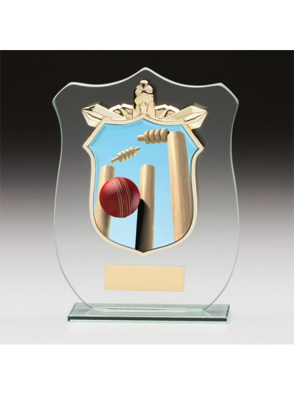 Titans Glass Cricket Shield