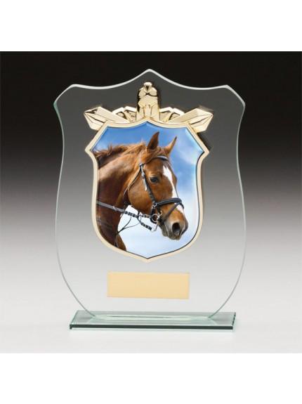 Titans Glass Equestrian Shield