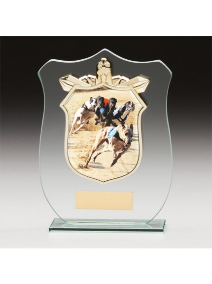 Titans Glass Greyhound Shield