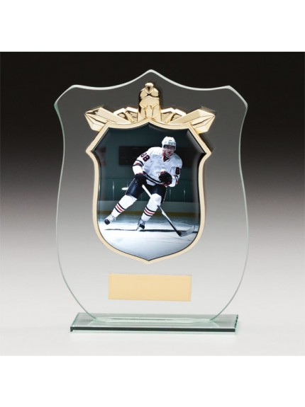 Titans Glass Ice Hockey Shield