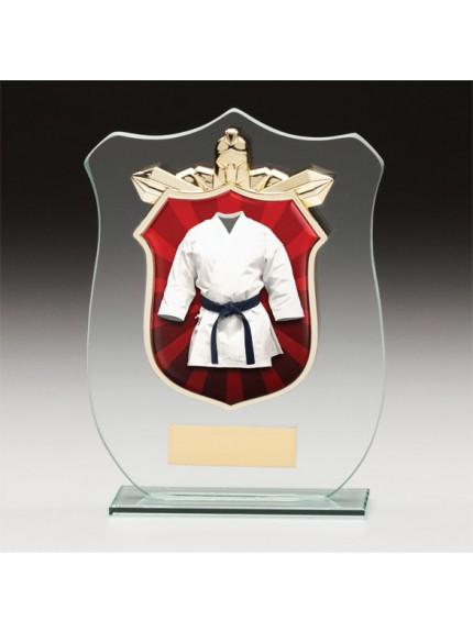 Titans Glass Martial Arts Shield