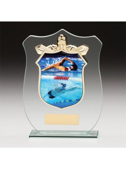 Titans Glass Swimming Shield