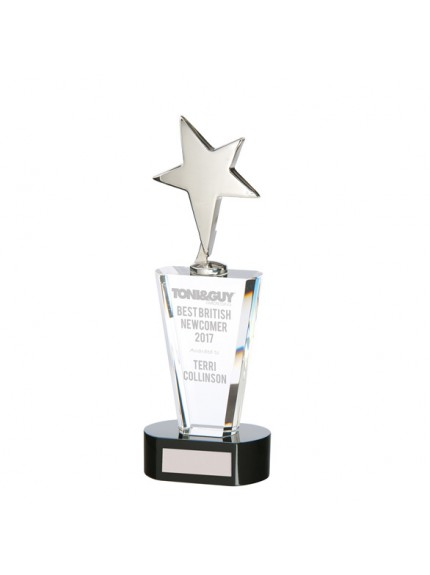 Monument Star Silver Crystal Award - Available in 2 Sizes