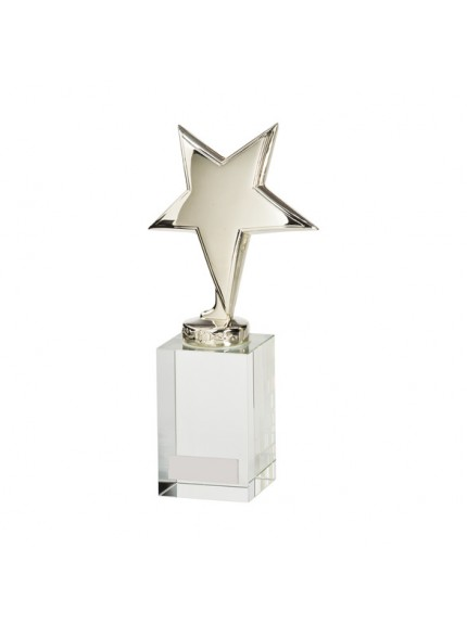 Endeavour Star Silver Crystal Award - Available in 2 Sizes
