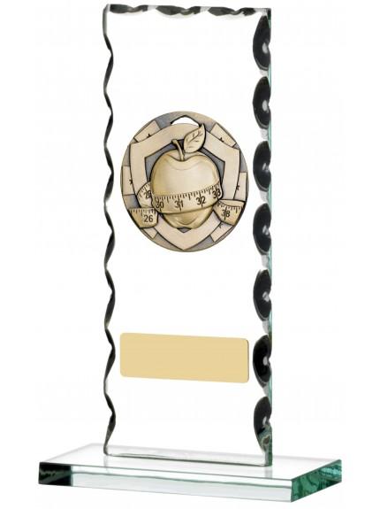 Slimming Award On Glass Plaque - 16cm