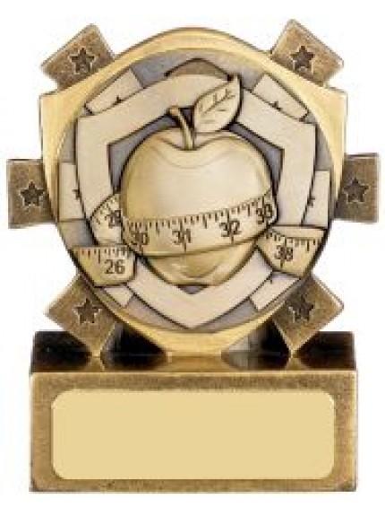 Mini Shield Slimming Award