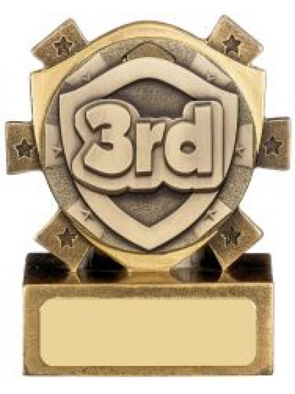 8cm Mini Shield Position Award