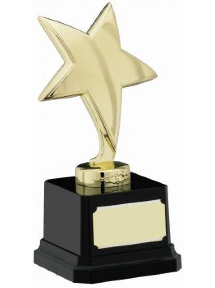 16.5cm Star Trophy