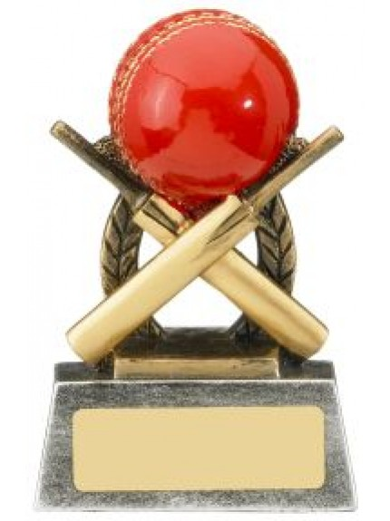 Escapade Cricket Award