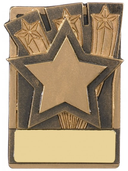 Mini Magnetic Star Award - 82mm