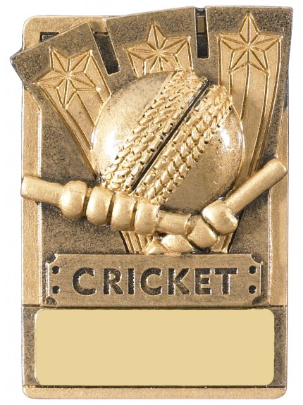 Mini Magnetic Cricket Award - 82mm