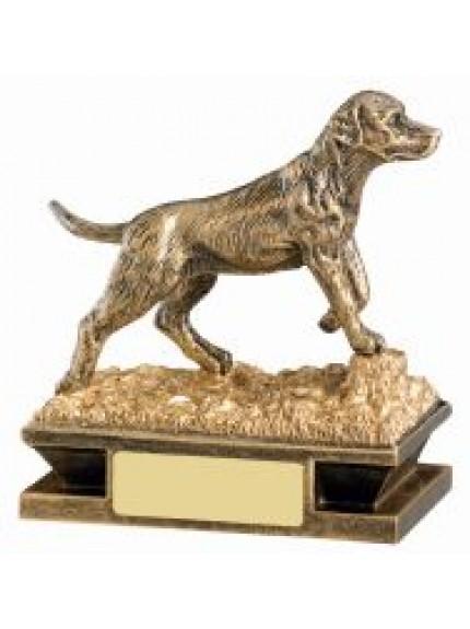 11cm Gundog Award