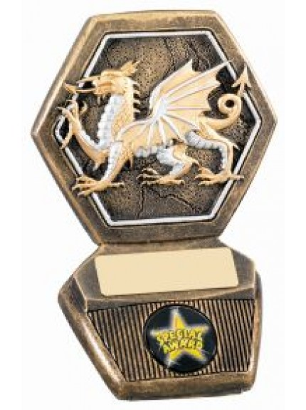 11cm Welsh National Award