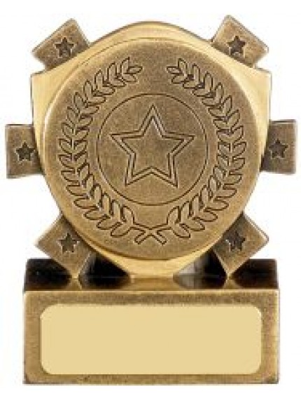 Mini Shield Award