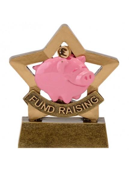 8.5cm Mini Star Fund Raising in gold and bronze