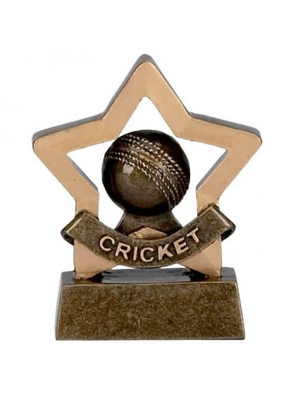 Cricket Ball Mini Star Resin Award