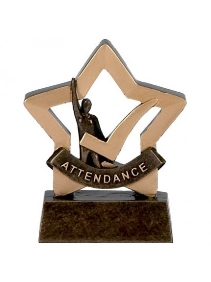 School Attendance Award from the Mini Star Range
