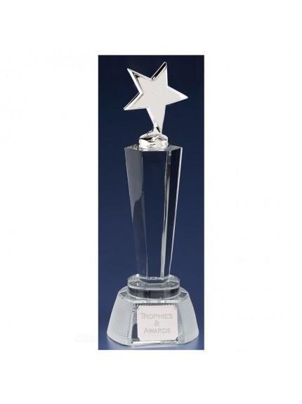 Agility Star Clear Award And Silver