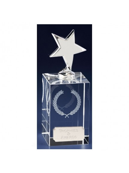 Clarity Silver Star Clear Award And Silver