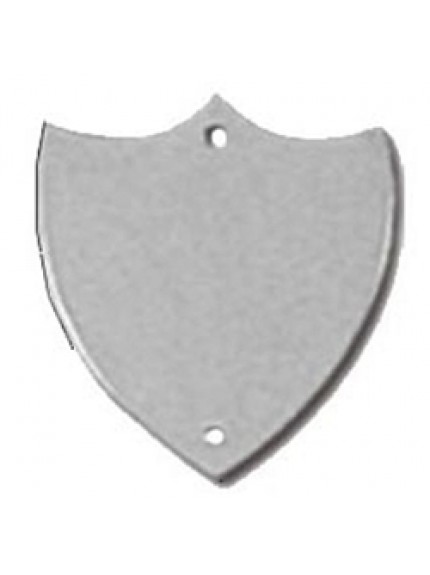 25mm Flat Silver Side Shield