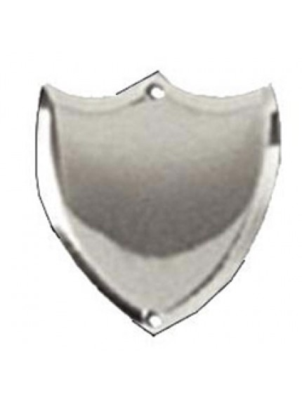 24mm Bevel Edged Silver Side Shield