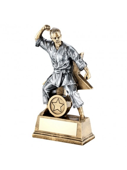 Brz/Gold/Pew Female Martial Arts Figure With Star Backing Trophy - 3 Sizes