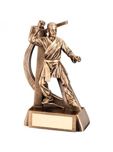 Bronze And Gold Male Martial Arts Geo Figure Trophy