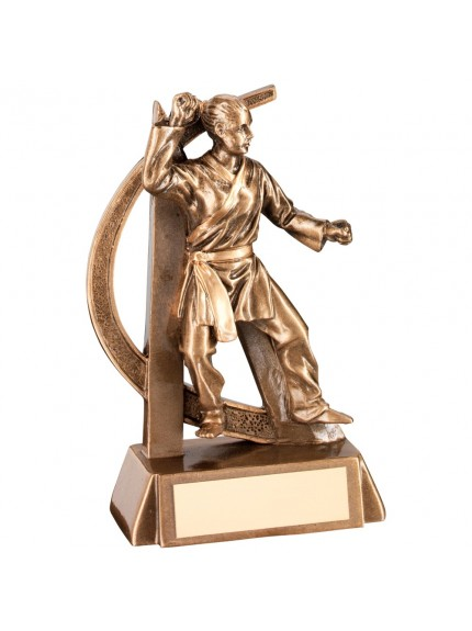 Bronze And Gold Female Martial Arts Geo Figure Trophy